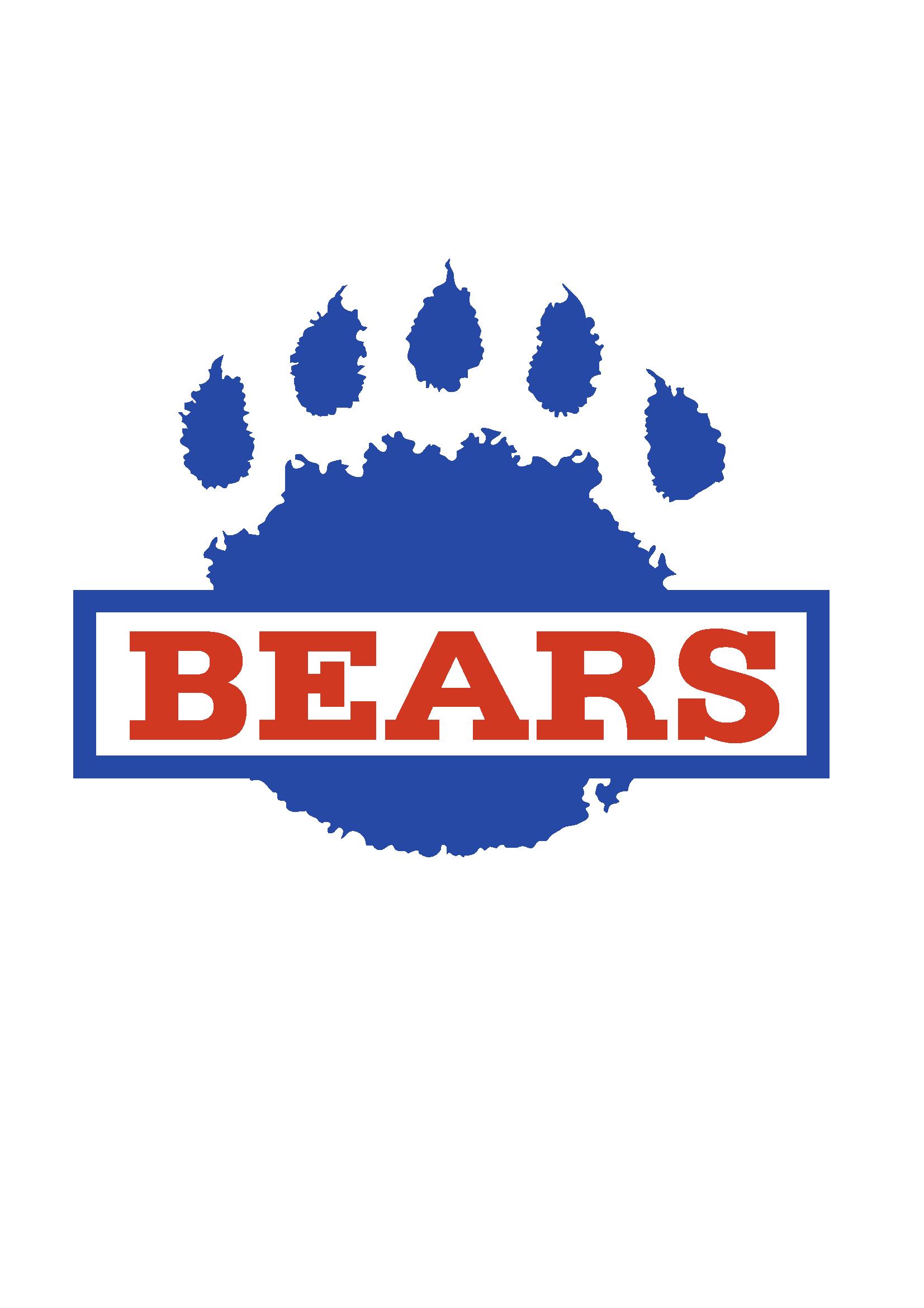Mitglieder stimmen über neues Bears Logo ab